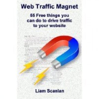 Web Traffic Magnet